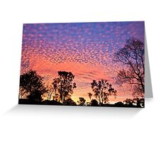 Sailor's Delight. Greeting Card