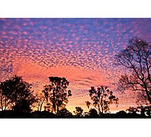 Sailor's Delight. Photographic Print