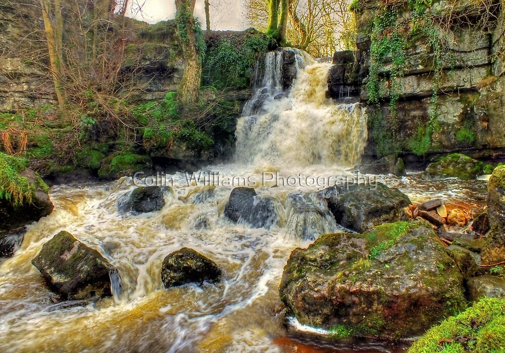 Cliff Beck Falls  1 - HDR by Colin  Williams Photography