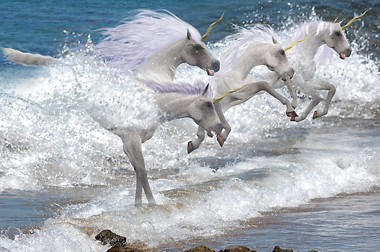 Birth of the Unicorn by Declan Carr