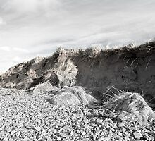 dunes after the big storm by morrbyte