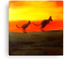Roos @ Sunset, Australia.  Canvas Print