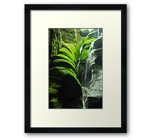 Mossy Waterfall - Nature Photography Framed Print