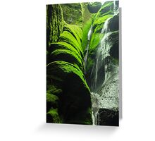 Mossy Waterfall - Nature Photography Greeting Card