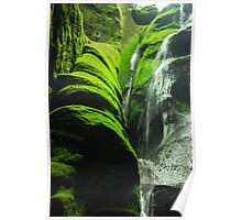 Mossy Waterfall - Nature Photography Poster