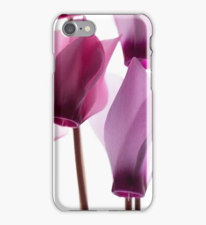 backlit violet petals (Cyclamen) on a lightbox iPhone Case/Skin