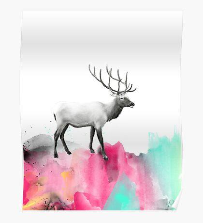 Wild No.2 // Elk Poster