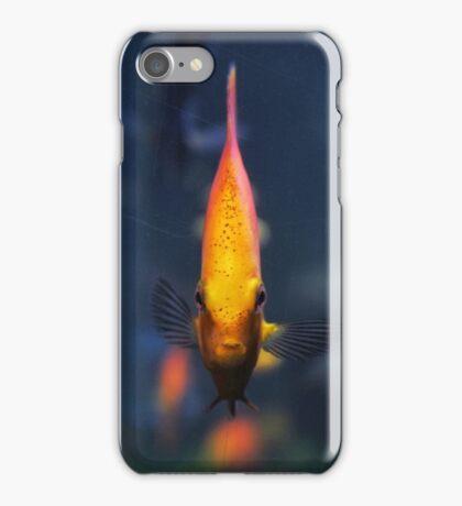 Through glass iPhone Case/Skin