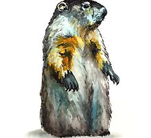 Winter Woodchuck by Lynn Oliver