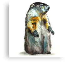 Winter Woodchuck Canvas Print