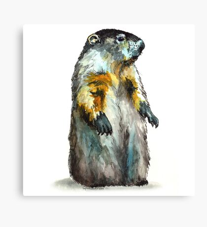 Winter Woodchuck (aka Groundhog) Canvas Print