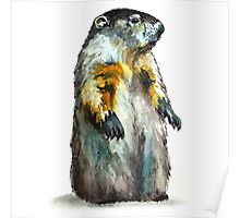 Winter Woodchuck Poster