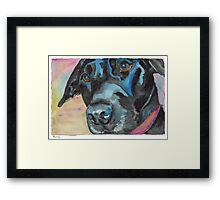 "Little Black Dog (""Korra"" the lab-mix) Framed Print"