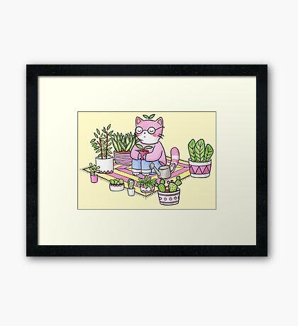 Cacti Meditation Framed Print