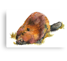 Pudge the Beaver Canvas Print
