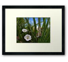 3612 Framed Print