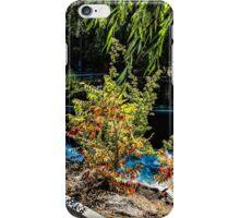 101Bend iPhone Case/Skin