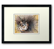 Squirrel in a hollow log Framed Print