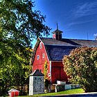 Barn and Out-Buildings Brunner Family Farm by Roger Passman
