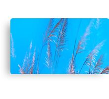 wildgrass Canvas Print