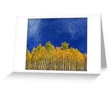 Autumn Aspens Greeting Card