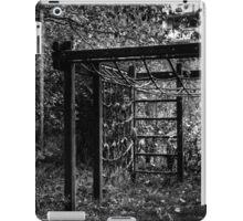 10.10.2014: Abandoned Playground II iPad Case/Skin
