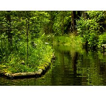 Green Peaceful Land - Nature Photography Photographic Print