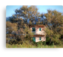 Nestled in the olive groves Canvas Print