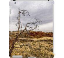 117Painted Hills iPad Case/Skin