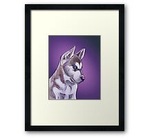 Siberian Husky illustration design Framed Print