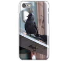 2 Inner City Jackdaws Above a Grocer Shop in Newport South Wales. iPhone Case/Skin