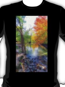 Autumn At Petrifying Springs T-Shirt