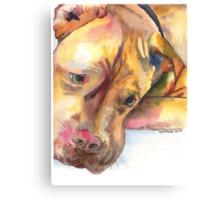 Killian, French Mastiff extraordinaire Canvas Print
