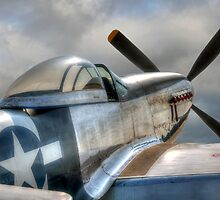 P51 Mustang - Ready for action by © Steve H Clark Photography