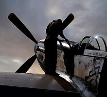 Mustang - Pre flight checks by © Steve H Clark Photography