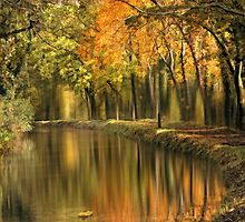Autumn reverie by Lyn Evans