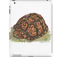 Eastern Box Turtle iPad Case/Skin