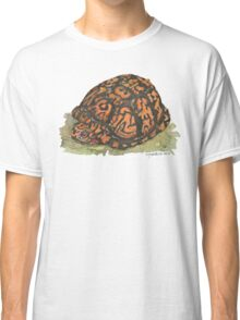 Eastern Box Turtle Classic T-Shirt