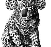 Koala by BioWorkZ