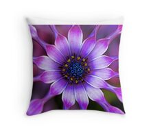 Soprano - Lilac Spoon African Daisy Throw Pillow