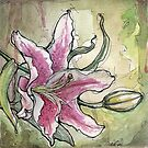 Stargazer Lily Watercolor Still Life Flower Painting by Ela Steel