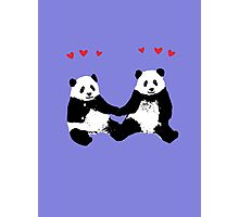 Panda Love Photographic Print