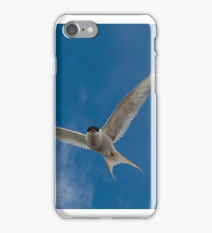 Dive Bombers iPhone Case/Skin