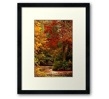 Autumn in the Dandenongs  Framed Print
