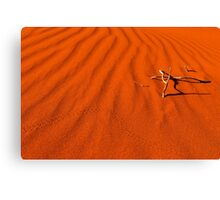 Red Dune Canvas Print