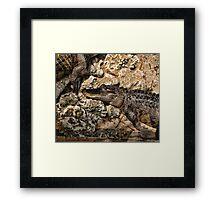 Gator Duvet Framed Print