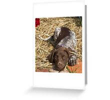 When I was a puppy..... Greeting Card
