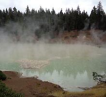 Steamy Cauldron  by KristinaL