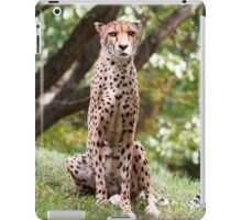 The Watching Cheetah iPad Case/Skin