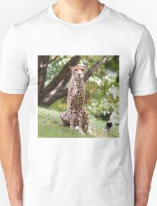 The Watching Cheetah T-Shirt